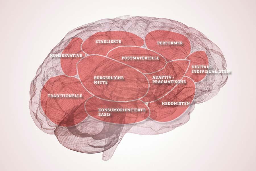 Die Sinus-Milieus gleichen in ihrer Anmutung dem menschlichen Gehirn